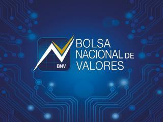 Operatividad Bursátil Plataforma SIOPEL