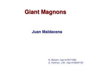 Giant Magnons