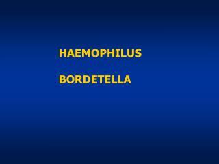 HAEMOPHILUS BORDETELLA