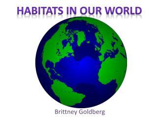 Brittney Goldberg