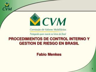PROCEDIMIENTOS DE CONTROL INTERNO Y GESTION DE RIESGO EN BRASIL Fabio Menkes