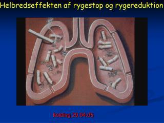 Helbredseffekten af rygestop og rygereduktion