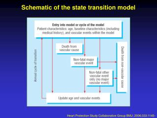 Schematic of the state transition model