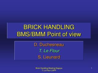 BRICK HANDLING BMS/BMM Point of view