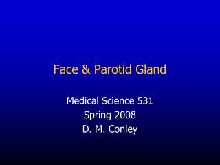 Face  Parotid Gland