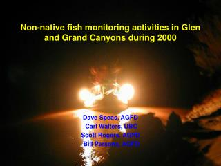 Non-native fish monitoring activities in Glen and Grand Canyons during 2000