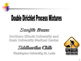 Double Dirichlet Process Mixtures