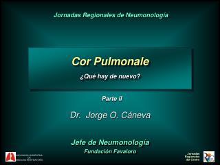 Dr .   Jorge O .  C áneva