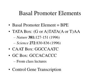 Basal Promoter Elements