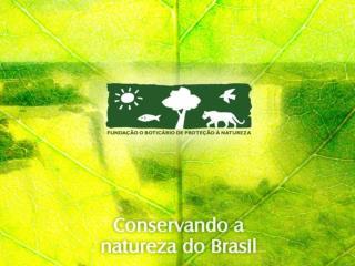 A conserva  o da natureza como caminho para o planeta equilibrado