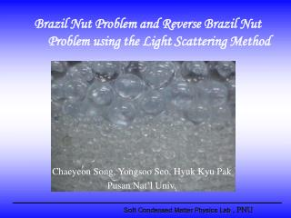 Brazil Nut Problem and Reverse Brazil Nut Problem using the Light Scattering Method