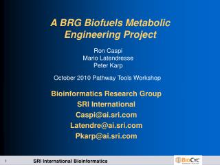A BRG Biofuels Metabolic Engineering Project
