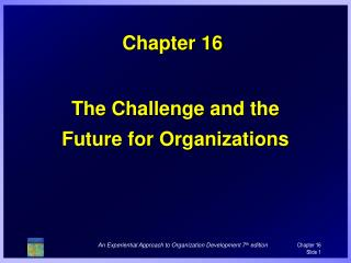 The Challenge and the Future for Organizations