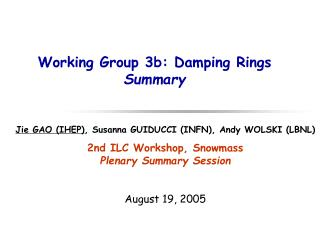 Working Group 3b: Damping Rings Summary