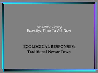 Consultative Meeting Eco-city: Time To Act Now