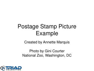 Postage Stamp Picture Example