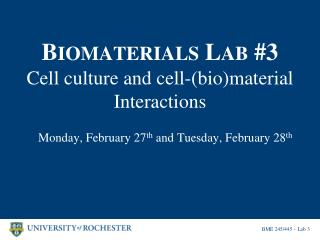 B IOMATERIALS  L AB  #3 Cell culture and cell-(bio)material Interactions