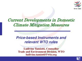 Current Developments in Domestic Climate Mitigation Measures