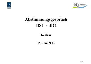 Abstimmungsgespräch  BSH - BfG Koblenz 19. Juni 2013
