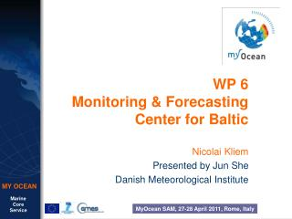 WP 6 Monitoring & Forecasting Center for Baltic