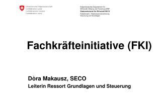 Fachkräfteinitiative (FKI)