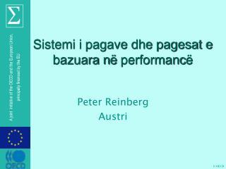 Sistemi i pagave dhe pagesat e bazuara n ë  performanc ë