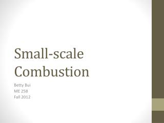 Small-scale Combustion