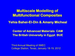 Multiscale Modelling of Multifunctional Composites