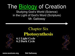Chapter Six Photosynthesis 6.1 Light Cycle 6.2 Dark Cycle