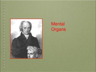 Mental Organs