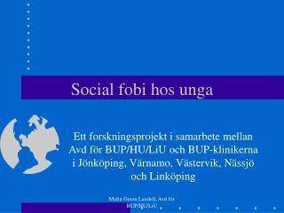 Social fobi hos unga
