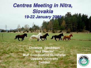 Centres Meeting in Nitra, Slovakia 19-22 January 2005