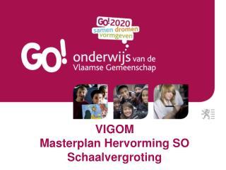 VIGOM Masterplan Hervorming SO Schaalvergroting
