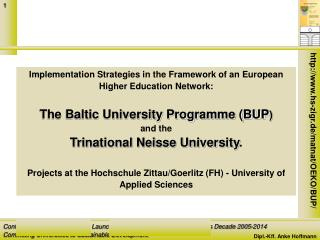 Implementation Strategies in the Framework of an European Higher Education Network: