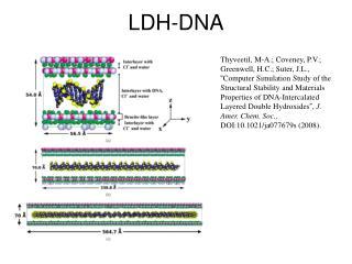 LDH-DNA