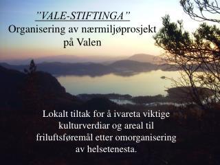 """""""VALE-STIFTINGA"""" Organisering av nærmiljøprosjekt på Valen"""