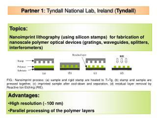 Partner 1 : Tyndall National Lab, Ireland ( Tyndall )