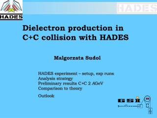 Dielectron production in C+C collision with HADES 		Malgorzata Sudol