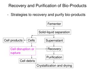 Recovery and Purification of Bio-Products