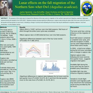 Lunar effects on the fall migration of the  Northern Saw-whet Owl  (Aegolius acadicus ).