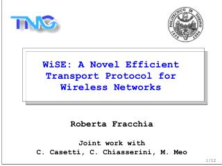 WiSE: A Novel Efficient Transport Protocol for Wireless Networks