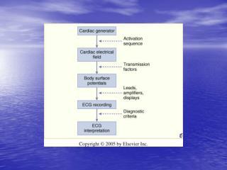 Complesso QRS Forze elettriche della depolarizzazione ventricolare