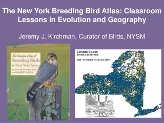 What is the Breeding Bird Atlas?