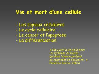 Vie et mort d'une cellule - Les signaux cellulaires  Le cycle cellulaire  Le cancer et l'apoptose