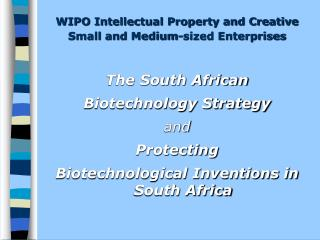 WIPO Intellectual Property and Creative Small and Medium-sized Enterprises