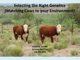 Selecting the Right Genetics (Matching Cows to your Environment)