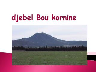 djebel Bou  kornine