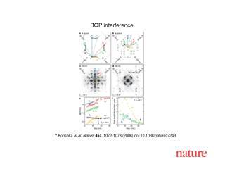 Y Kohsaka et al. Nature 454 , 1 072 -1 078  (2008) doi:10.1038/nature07 243