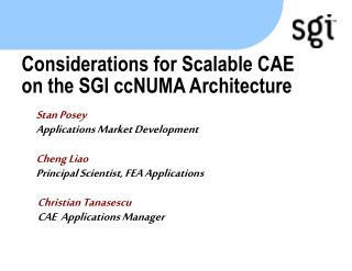 Considerations for Scalable CAE on the SGI ccNUMA Architecture