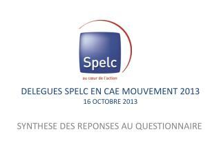DELEGUES SPELC EN CAE MOUVEMENT 2013 16 OCTOBRE 2013